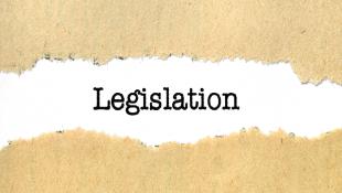 Legislation in torn paper