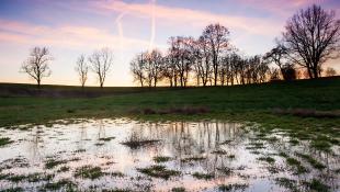Flooded plains