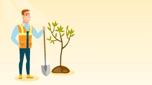 Construction worker holding shovel planting tree