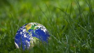 Globe lying on grass