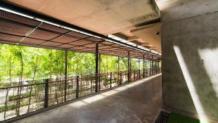 Breezeway with cement and greenery