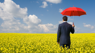 Businessman in yellow field holding red umbrella