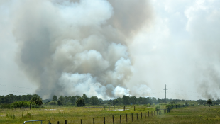 Billowing smoke on a field