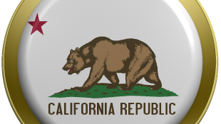 California flag on round button close-up