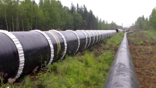 Photo of long pipeline in wooded area