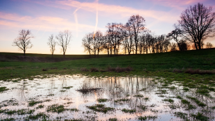 Flooded plain